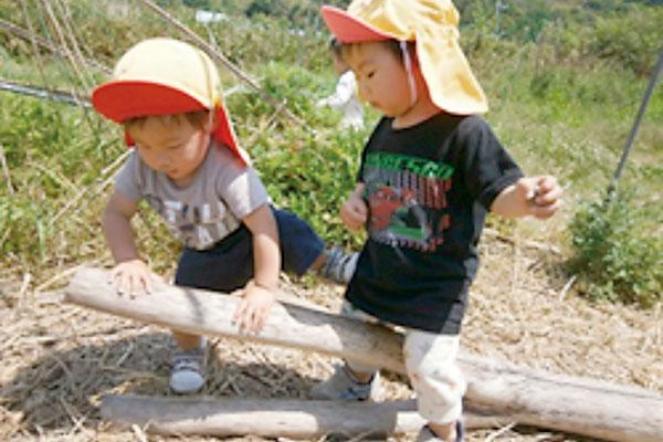 自然の中は、大発見がいっぱい!(1歳児,2歳児)