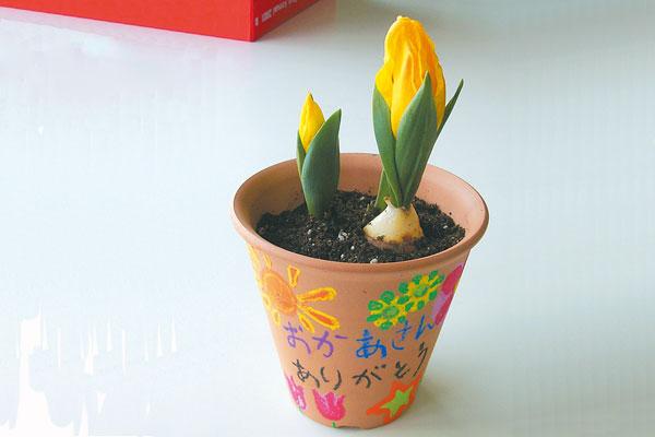 母の日・父の日プレゼント「鉢植えのプレゼント」(4歳児,5歳児)
