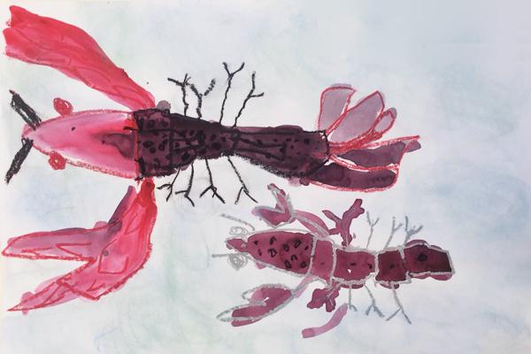 観察画「ザリガニ」(5歳児)